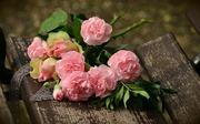 bouquet-1463562_640.jpg